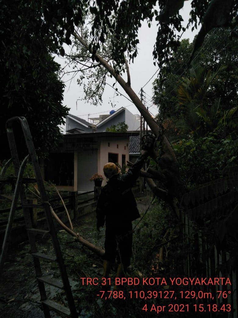 Dahan Pohon Patah  di Jalan Bimasakti 46 Demangan Gondokusuman